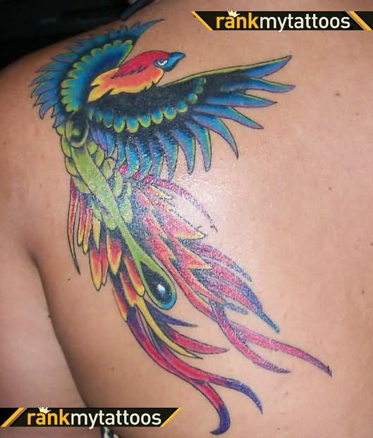 Rasta bird tattoo