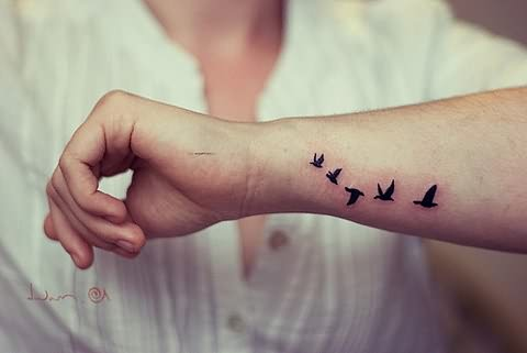 Small Birds Flying On Wrist