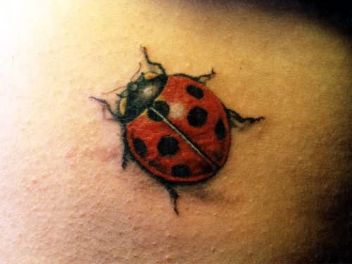 June Bug Tattoo Bug Tattoo Design