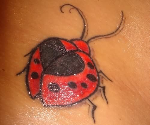 Ladybug Tattoos Designs Ideas And Meaning: Bug Tattoo Images & Designs