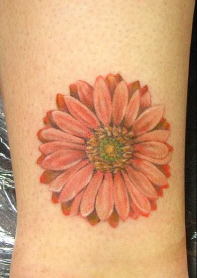 Amazing Daisy Flower Tattoo