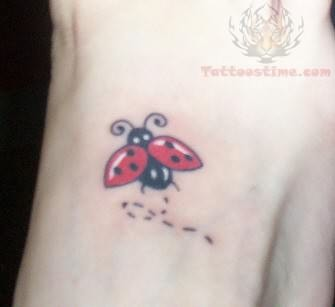Ladybug Tattoo For Boys
