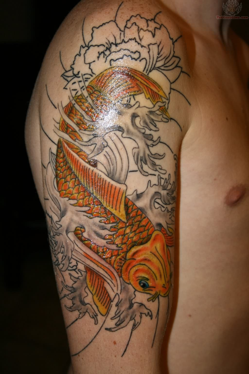 Simple dresses 10 amazing fighting fish tattoo for Amazing koi fish