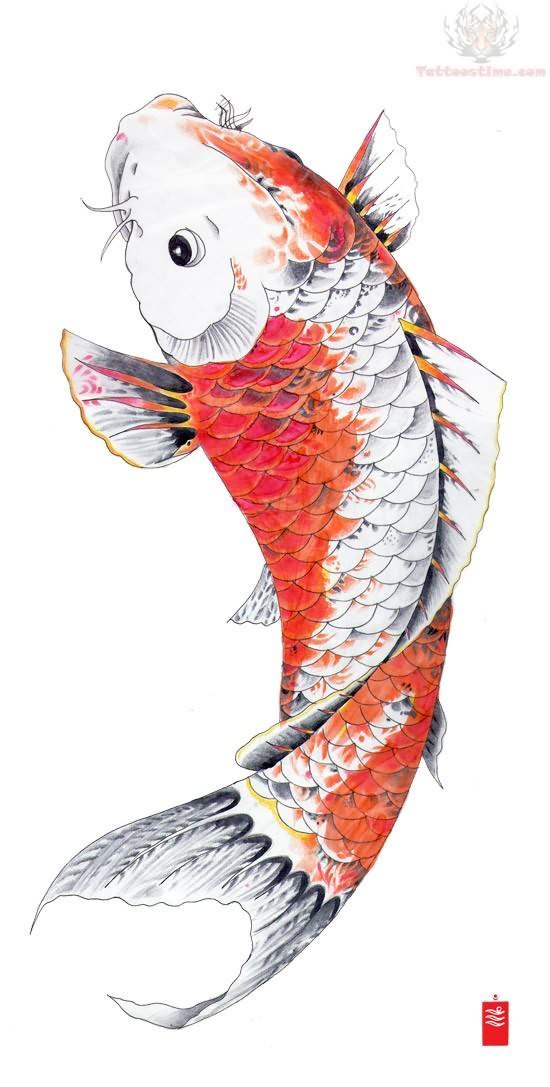 Orange koi fish tattoo flash for Japanese coy fish