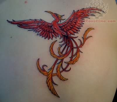 naintia feeniks tattoo