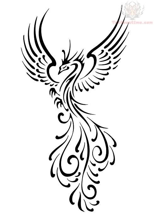 Black Phoenix Tattoo Design