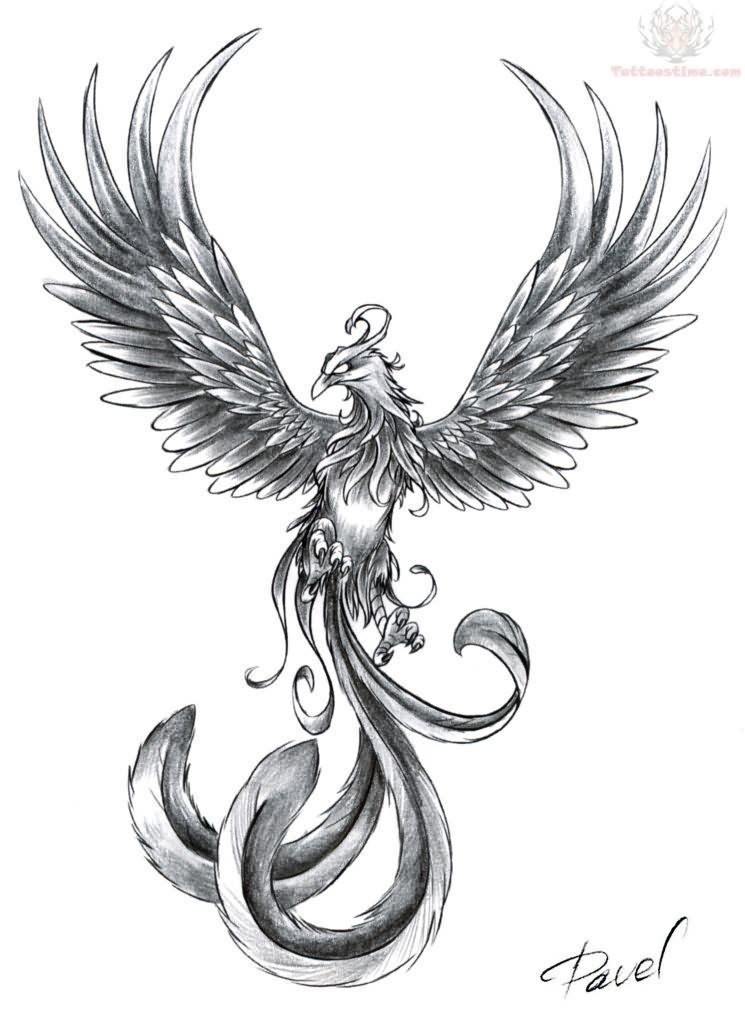tattoo quetzal tribal phoenix com 159 images tattoo http samples com src tattoostime www img