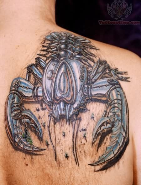 Scorpion Tattoos - Tattoo Me Now
