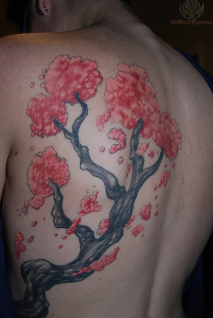 Cherry Blossoms Back Tattoos: Cherry Blossom Tree Tattoo On Back Shoulder
