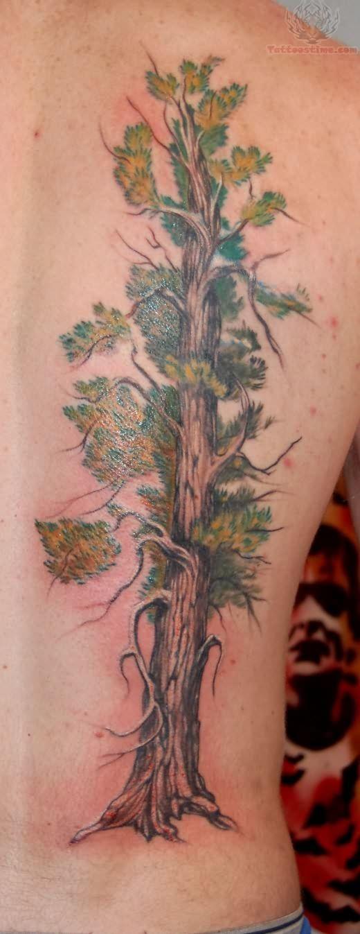 Tree tattoo on back for Tree back tattoo
