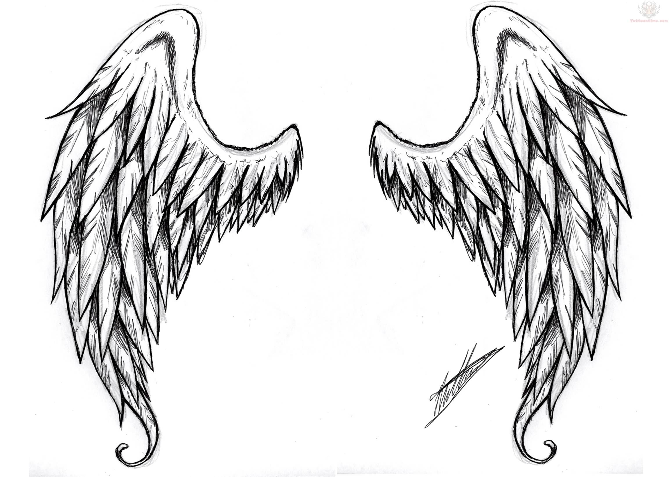 Demon Wings Tattoos Design