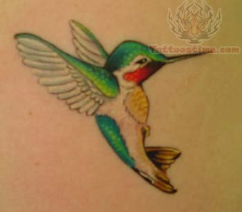Hummingbird Amazing Tattoo
