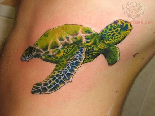 Green Turtle - Sea Creature Tattoo