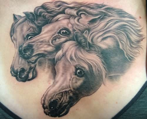 Wild horse head tattoo for Wild horse tattoo