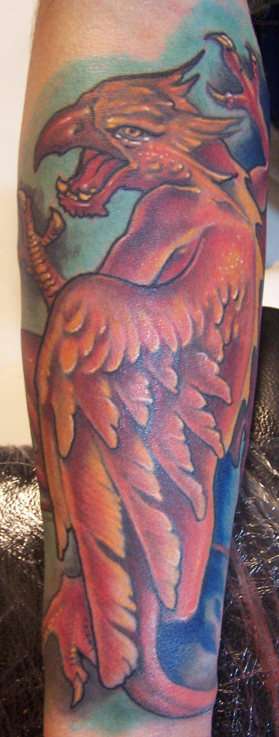 Koi Fish Tattoo Half Sleeve Stencil Griffin Dark Tattoo