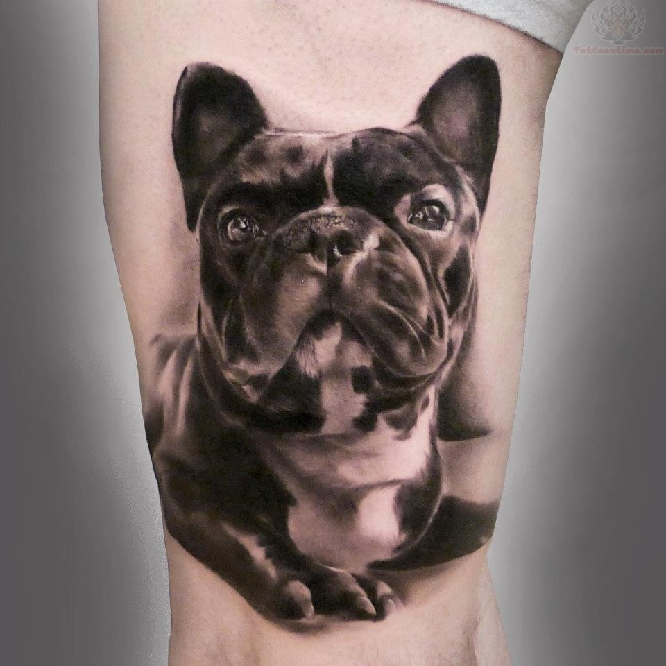 French Bull Dog Tattoo
