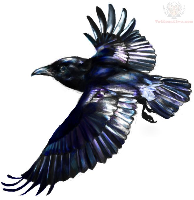 Raven bird flying tattoo for Raven bird tattoo