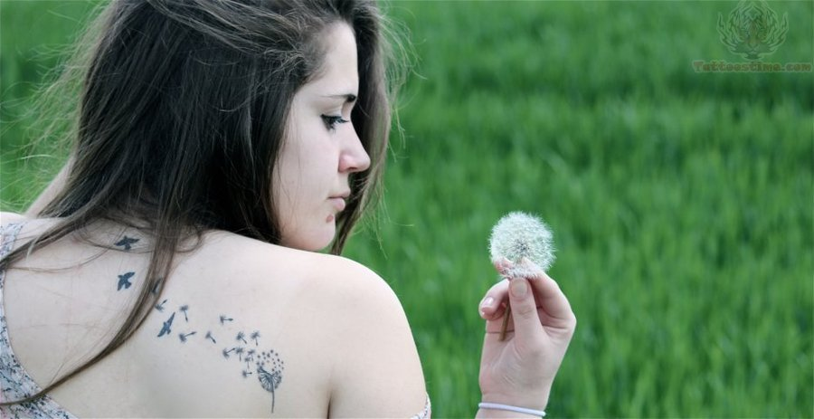 Dandelion Tattoos : Page 49
