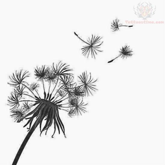 Dandelion tattoo design illustrations - photo#4