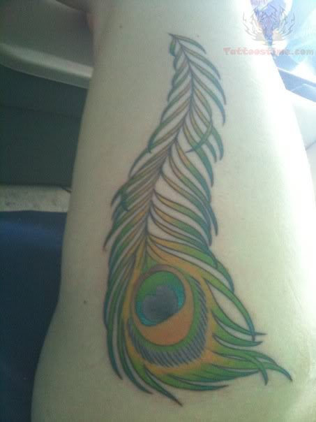 ... Photos - Rib Peacock Feather Colors Tattoo Color Tattoos Best Tats