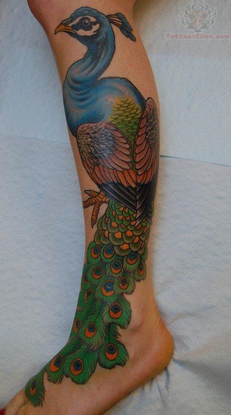 Peacock tattoo leg