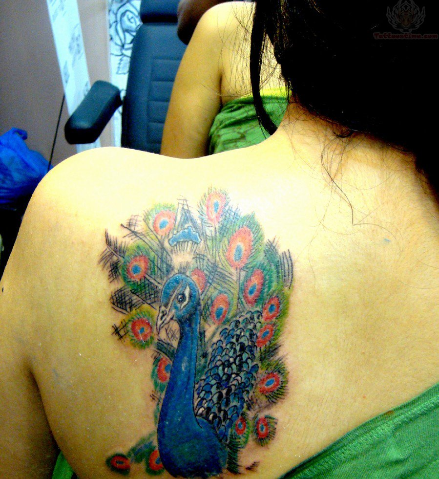 Colorful peacock tattoo on back shoulder for Peacock back tattoo