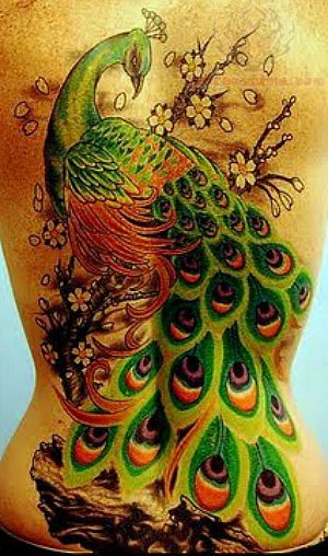Peacock back body tattoos for Peacock tattoo on back