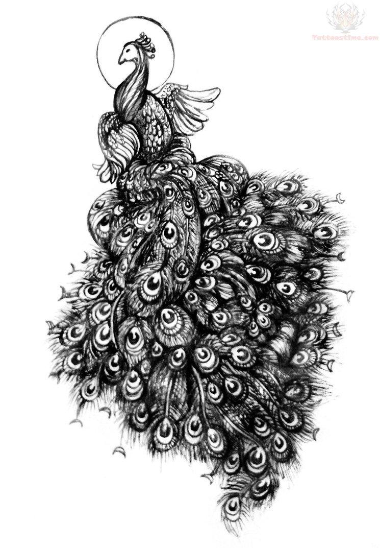 peacock black ink tattoo design. Black Bedroom Furniture Sets. Home Design Ideas