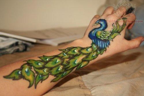 Peacock Tattoos : Page 26