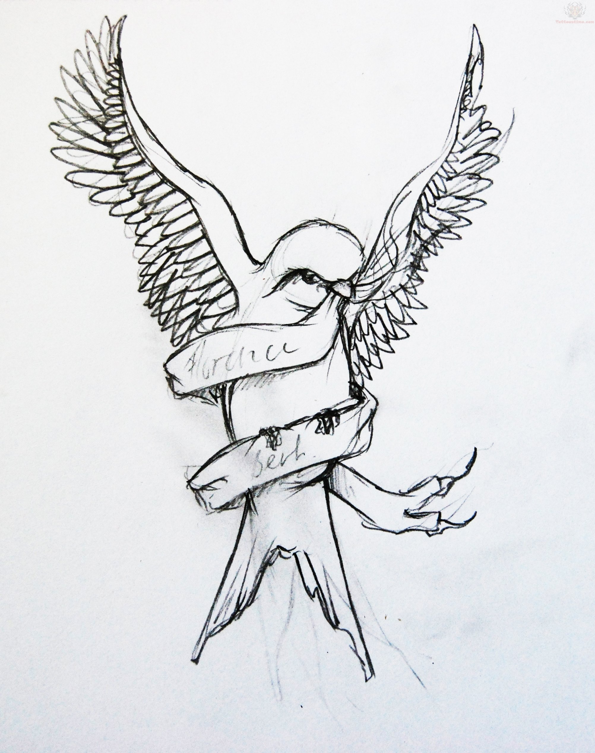 Swallows Tattoo Designs Drawings