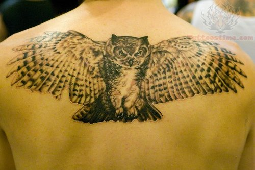 angry owl flying tattoo on upperback. Black Bedroom Furniture Sets. Home Design Ideas