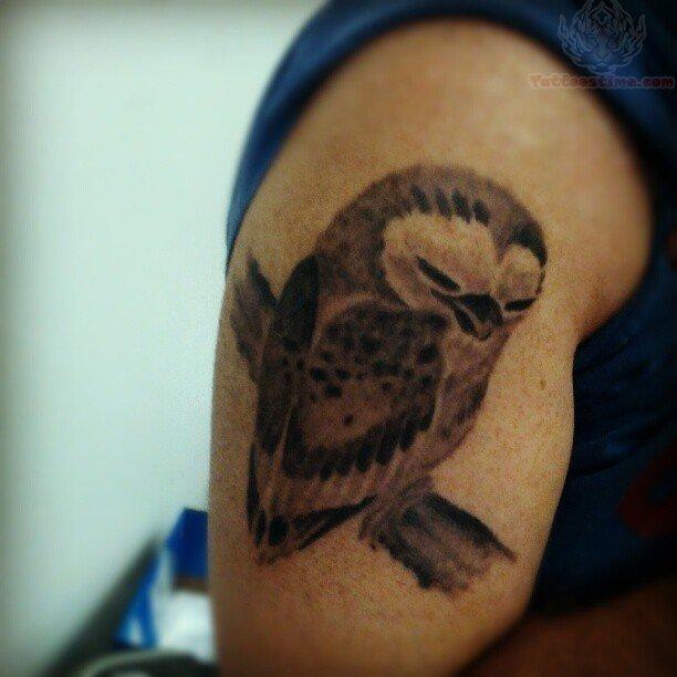 Brown Tattoo Ink Of Brown Ink Owl Tattoo On Men Bicep