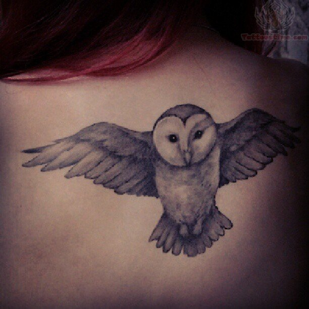 Flying Owl Tattoos