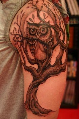 owl sitting on tree tattoo on men half sleeve rh tattoostime com Baby Owl Tattoo Baby Owl Tattoo