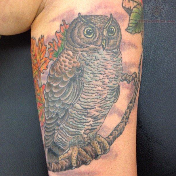 Native american owl tattoo - photo#26