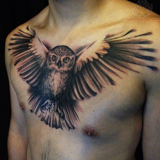 ... com img src http www tattoostime com images 256 flying owl tattoo Owl Tattoos For Men