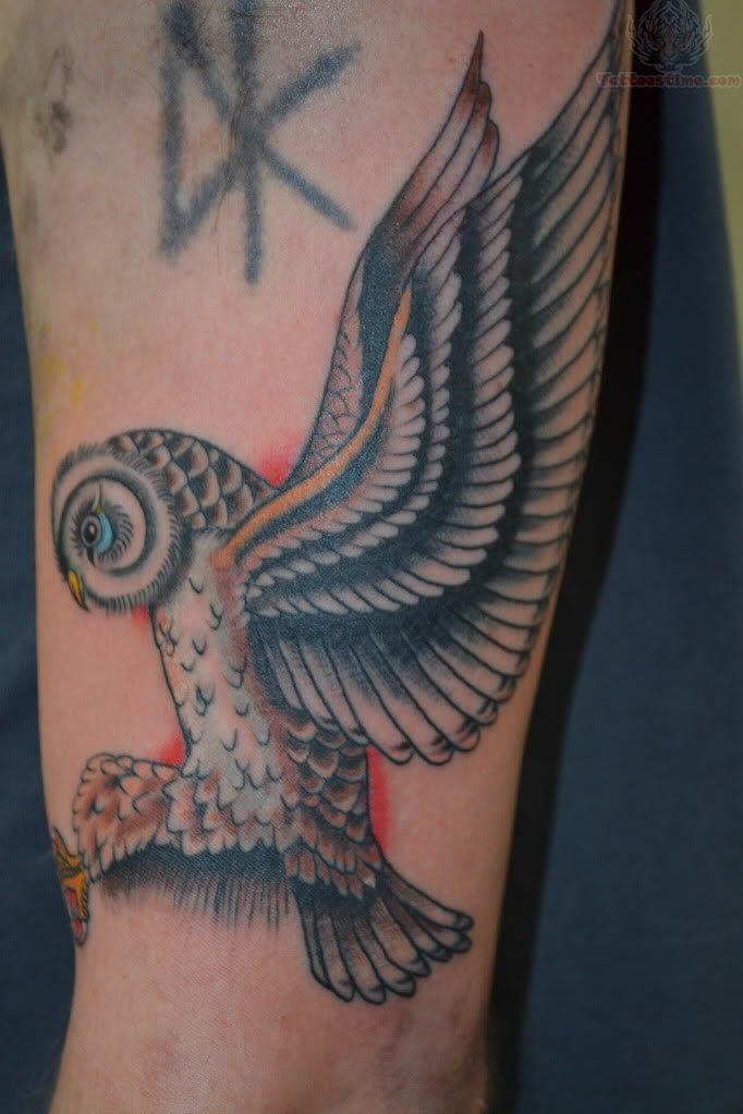 100+ [ Flying Owl Tattoo Photos Pictures ] | 64 Attractive ...