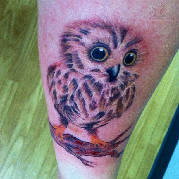 Owl Baby Sit On Branch Tattoo