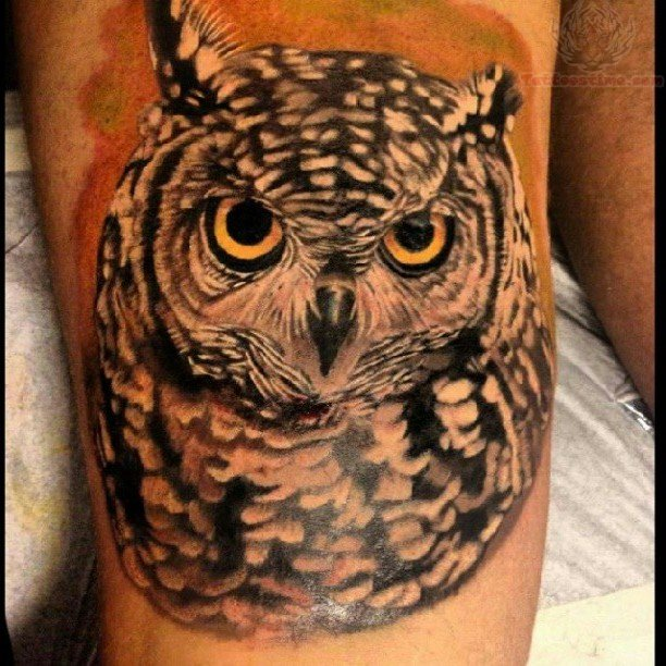 owl tattoos page 10