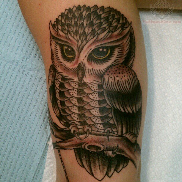 Owl Tattoos Leg Funny Tattoo Pictures