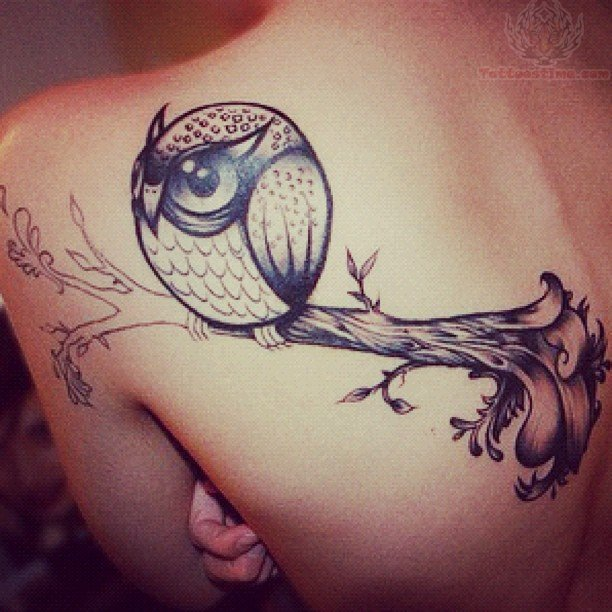 Tree and owl tattoo on back shoulder for Tree shoulder tattoo