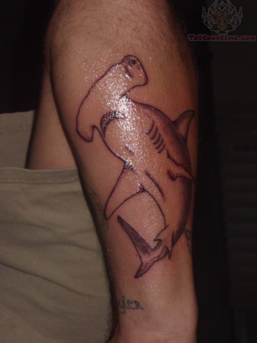 Hammerhead Shark Tattoo Images & Designs