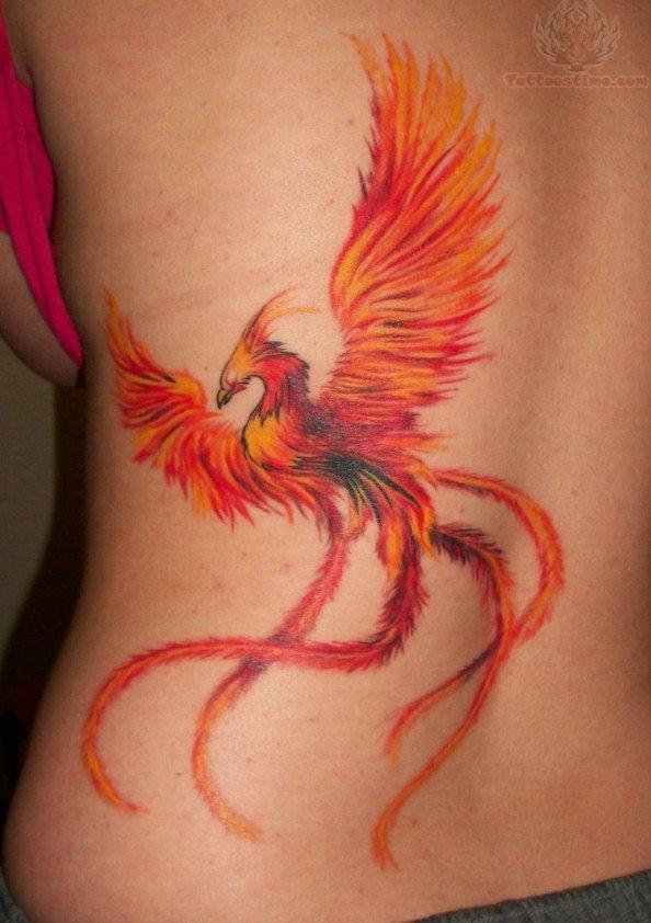 phoenix bird tail tattoo. Black Bedroom Furniture Sets. Home Design Ideas