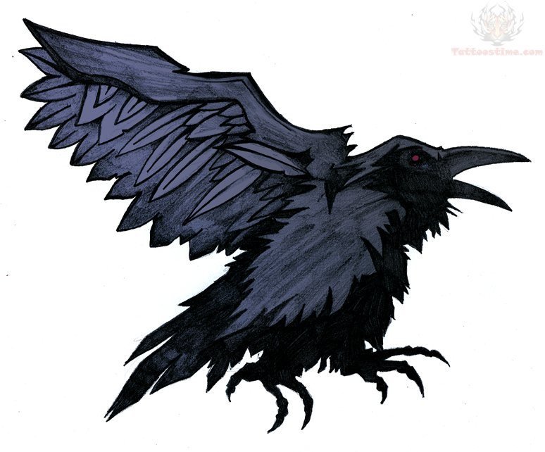 Flying raven design