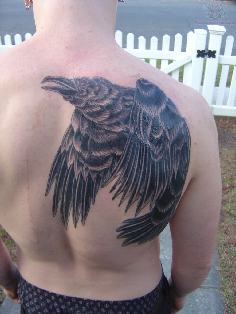 Pics photos amazing raven back shoulder tattoo
