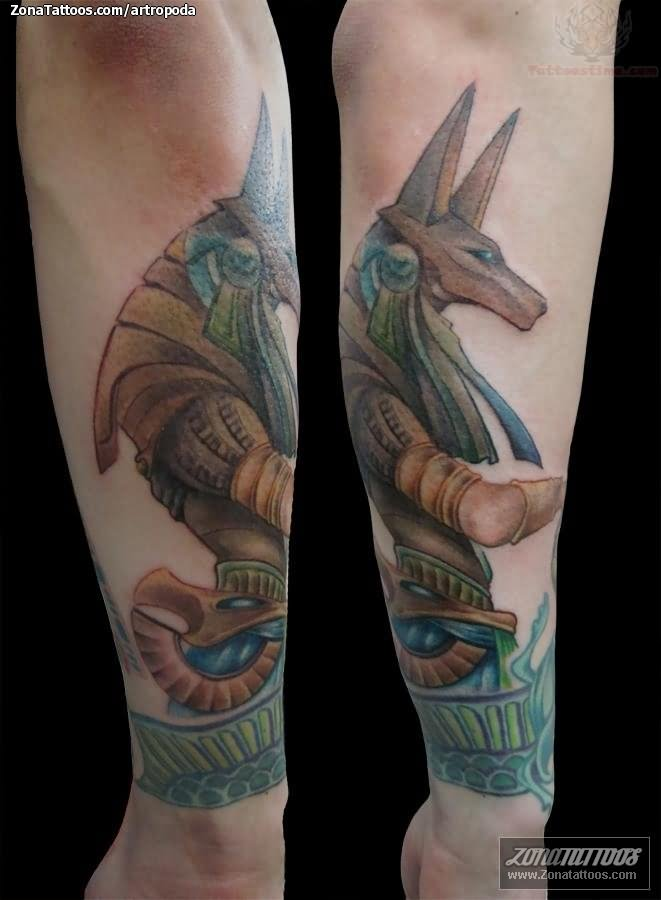 Anubis Tattoo Images Amp Designs