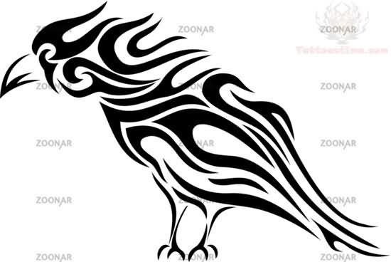 celtic and tribal crow tattoo design rh tattoostime com tribal crow tattoo designs tribal crow tattoo designs