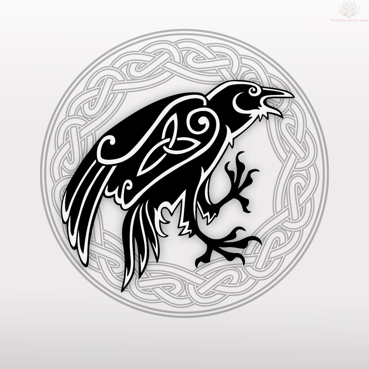 Celtic Crow Tattoo Design Celtic Raven Tattoos