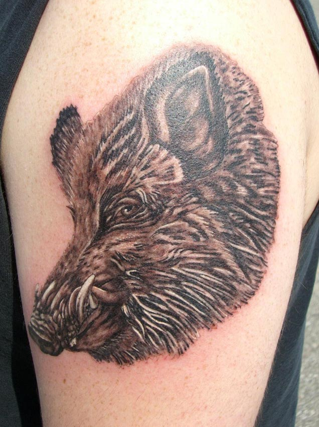 wild boar head tattoo on left half sleeve