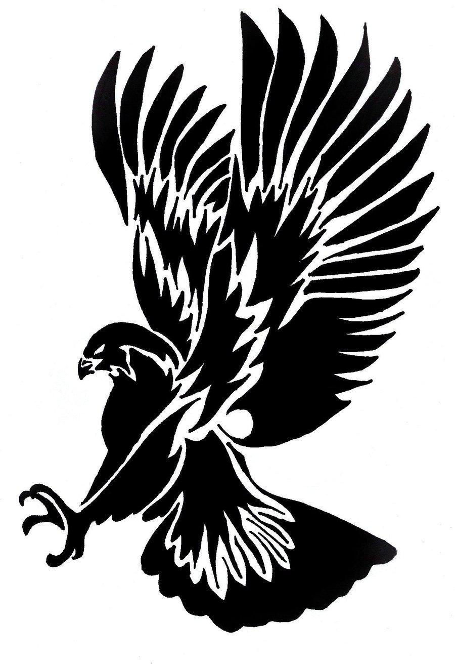 Black Hawk Bird Drawing